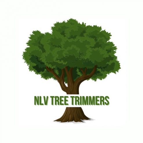 tree-services-north-las-vegas-nlv-tree-trimmers-business-site